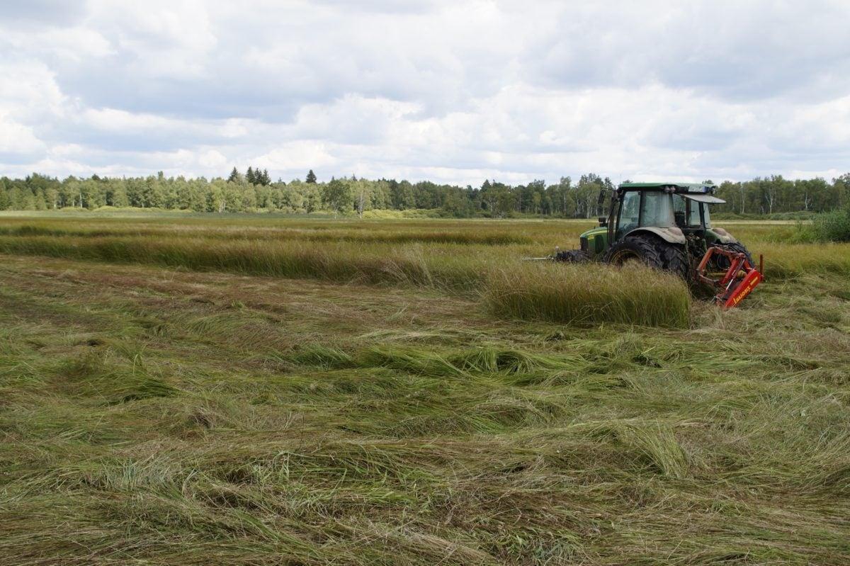 peut-on-construire-sur-un-terrain-agricole